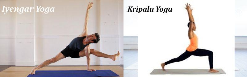 lyenger and kripalu yoga