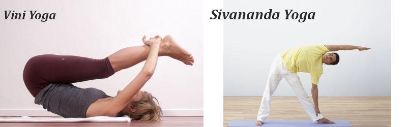 vini yoga and sivananda yoga