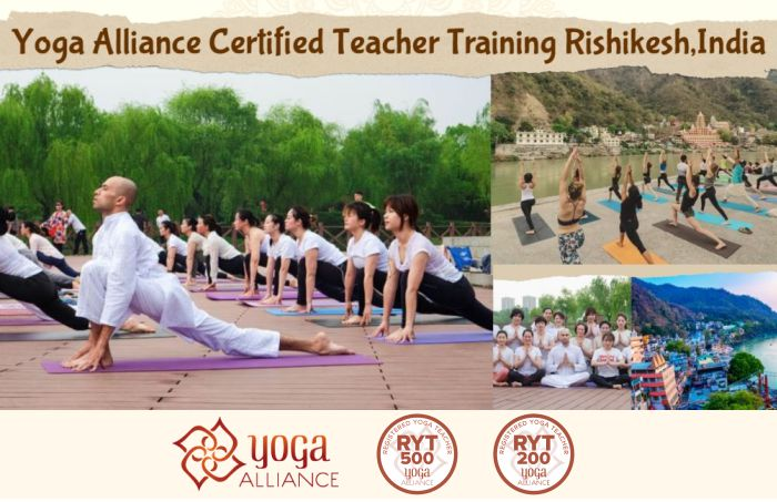 Yoga Teacher Training Levels